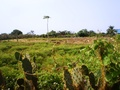 Land for sale in Lome