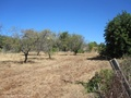 Building plot for sale in Loule