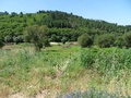 Building plot for sale in Carregal do Sal