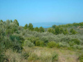 Land for sale in Pelion