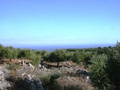 Land for sale in Kalamata
