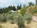 Building plot for sale in Yenisoloz