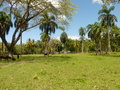 Land for sale in Gaspar Hernandez
